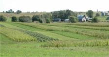 Младите земеделски стопани получиха 1.42 млн. лева за Кампания 2017