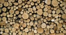 Задържани са 8 кубика дървесина за три дни в Разлог