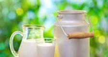 Европейският съюз заема водеща позиция в света по износ на млечни продукти