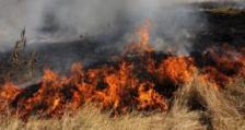 Голям пожар бушува край Кочериново