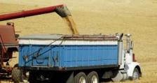 Добър старт при износа на зърно отчита Русия през новата стопанска година