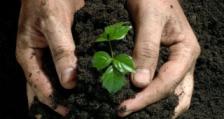 """Заместник-министър Димитров ще открие семинар на тема """"Перспективи за развитие на биологичното земеделие в страните от Югоизточна Европа"""""""