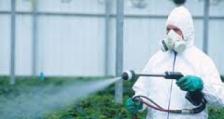 Гласуването за евентуална тотална забрана на неоникотиноидите се отлага за март следващата година