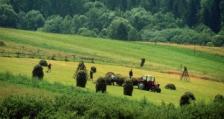 Все повече фермери в Германия се оплакват от бавен интернет-достъп