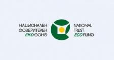 НДЕФ отправи нова покана за покупка на електромобили