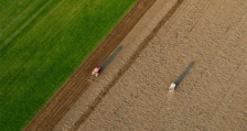 114 оризопроизводители получават субсидии по СЕПП в Пловдивска област
