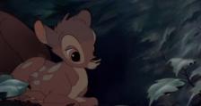Осъдиха бракониер да гледа анимация с еленче