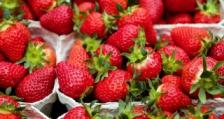 Спад в цените на градинските ягоди в Полша
